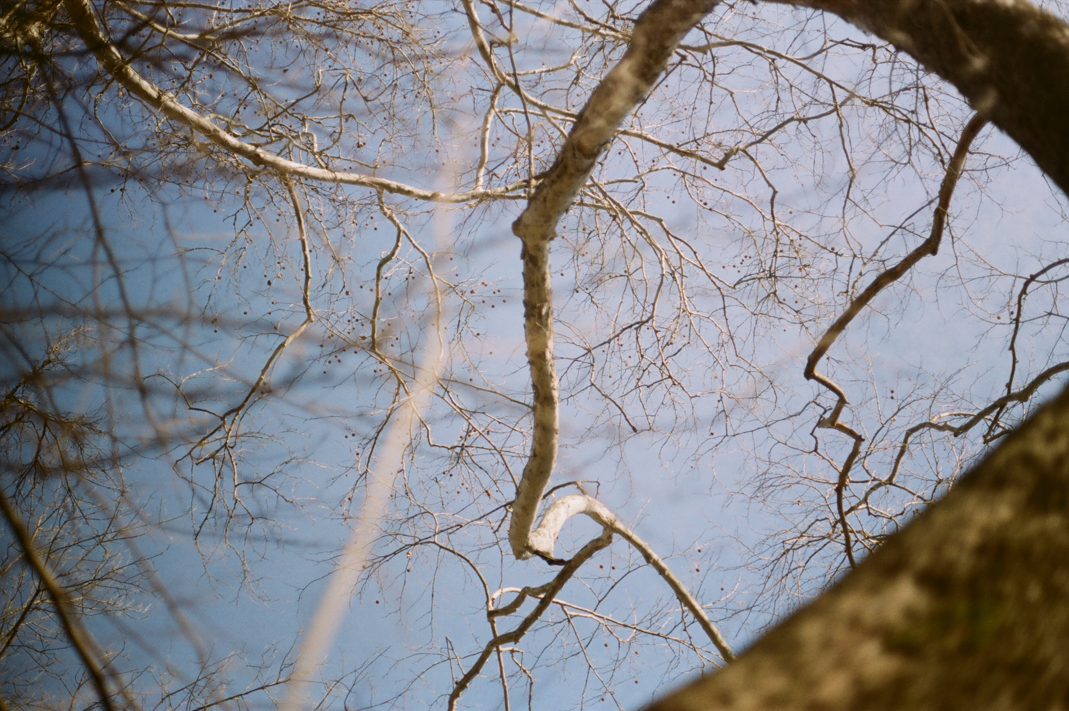 Adventures in Film Photography: Winter in Ohio